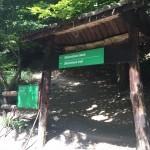 Bikcevic trail start