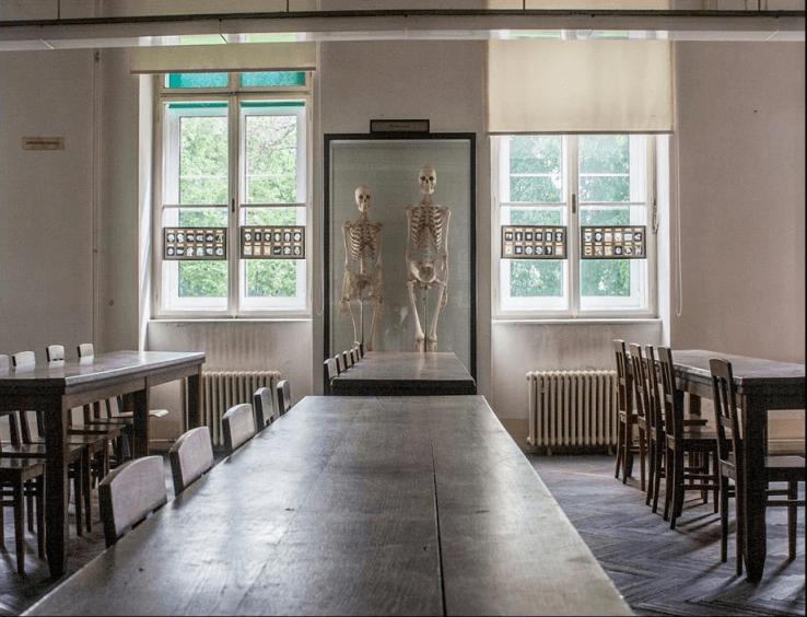exhibition anathomy